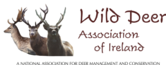 Wild Deer Association of Ireland